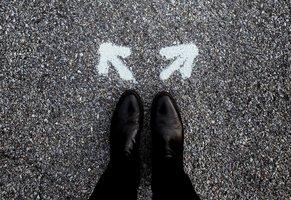 custom-software-vs-standard-software-a-comparison